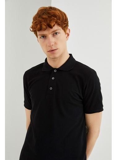 Z Giyim Pamuklu Düğmeli Polo Yaka T-shirt Siyah